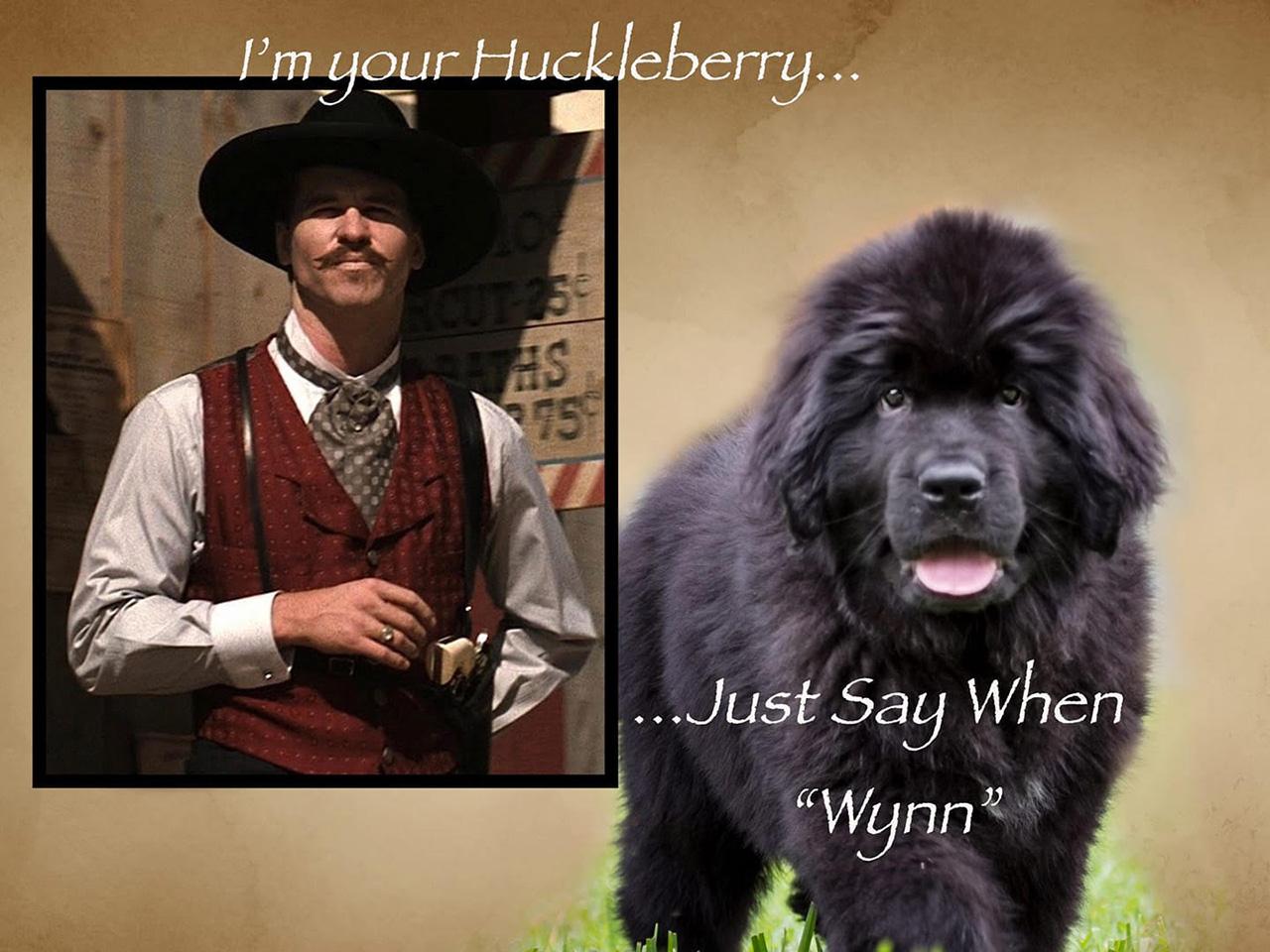 Huckleberry arrival