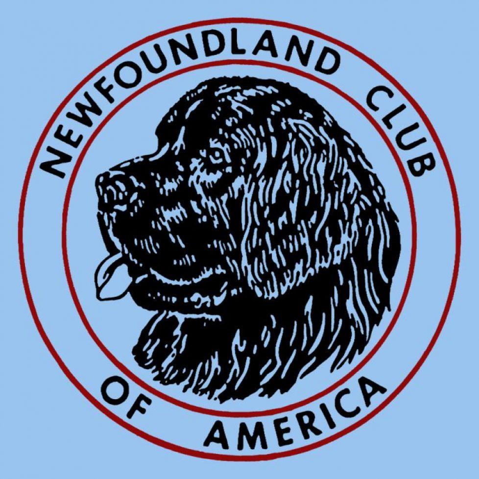 NCA logo